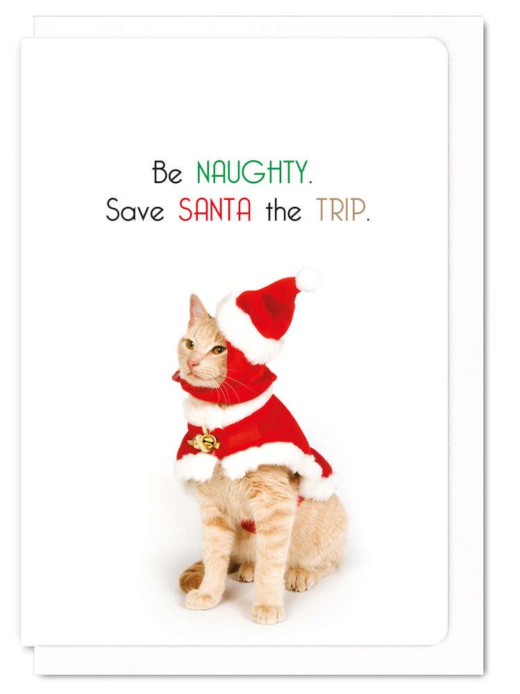 クリスマスカード メッセージカード ねこ 猫柄 かわいい Be naughty