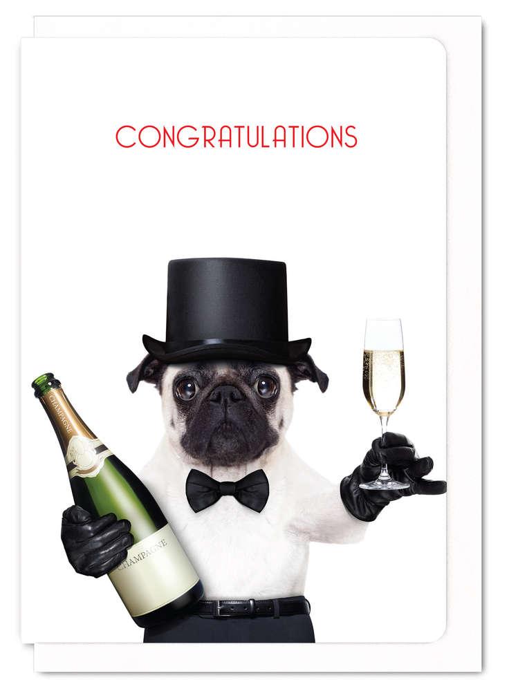 グリーティングカード Congratulations from mr pug パグ