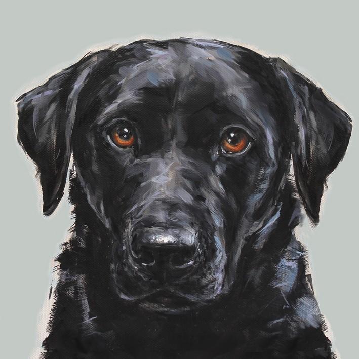Black Labrador  Greetings Card