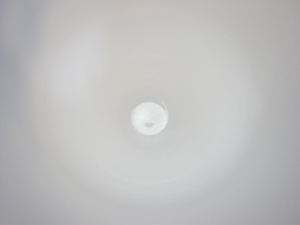 フェデラル プリントマグ フッテッドマグ アメリカンイーグル SS No.065