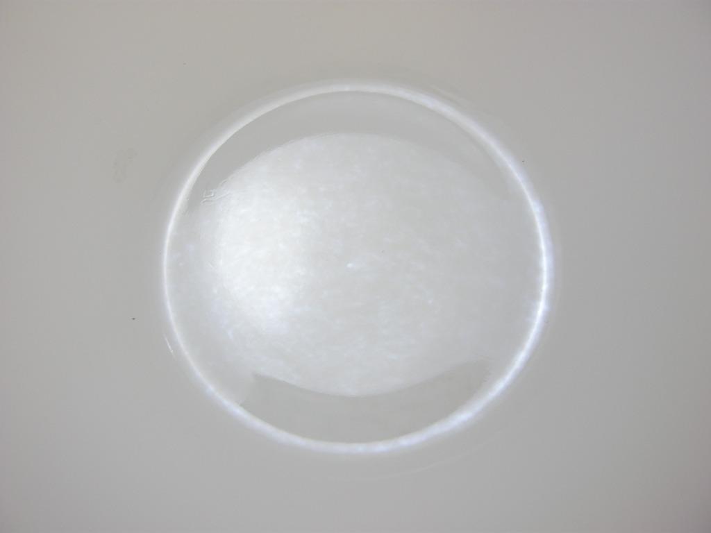 フェデラル オーロラ カップ AB No.003