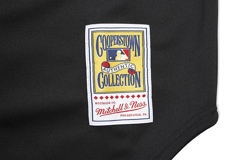MITCHELL & NESS AUTHENTIC JERSEY (NEW YORK METS/ALTERNATE/2000/MIKE PIAZZA)