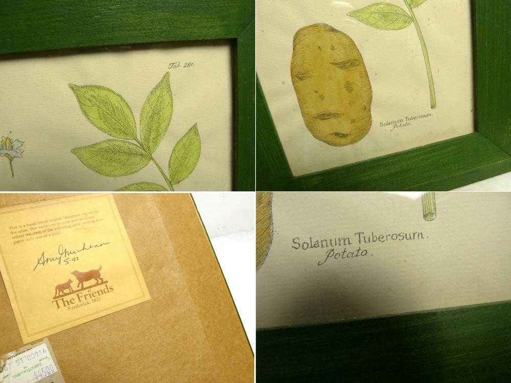 木製額 グリーン ジャガイモ Solanum Tuberosum 画寸18.8×14.7cm【中古】