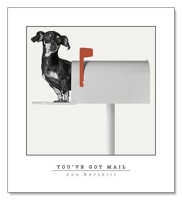 Youve Got Mail(ジョン ベルテッリ)