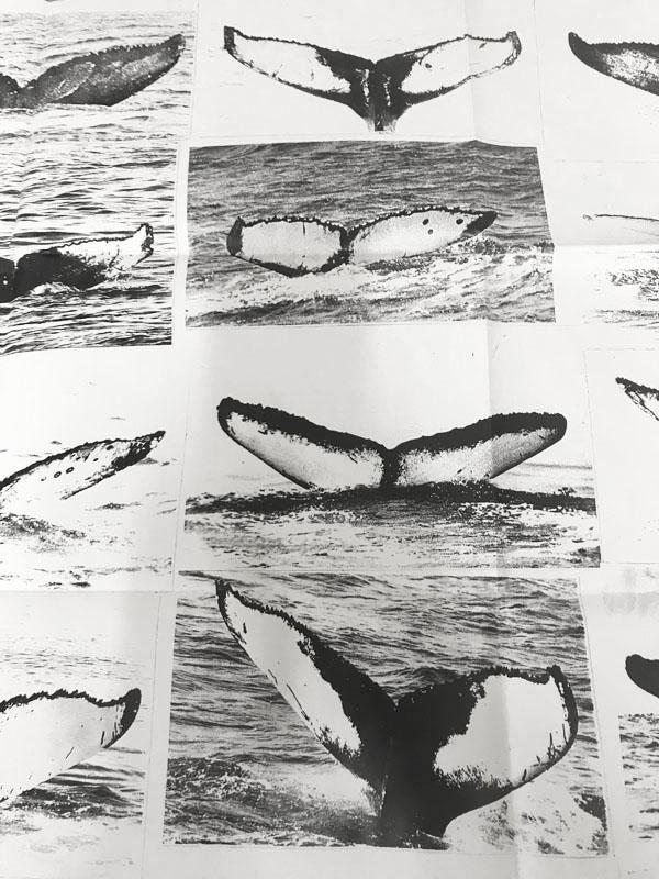 Comme des garcons Sixth sense Whale アルミ製ハイグレードフレーム額装品(コムデギャルソン)