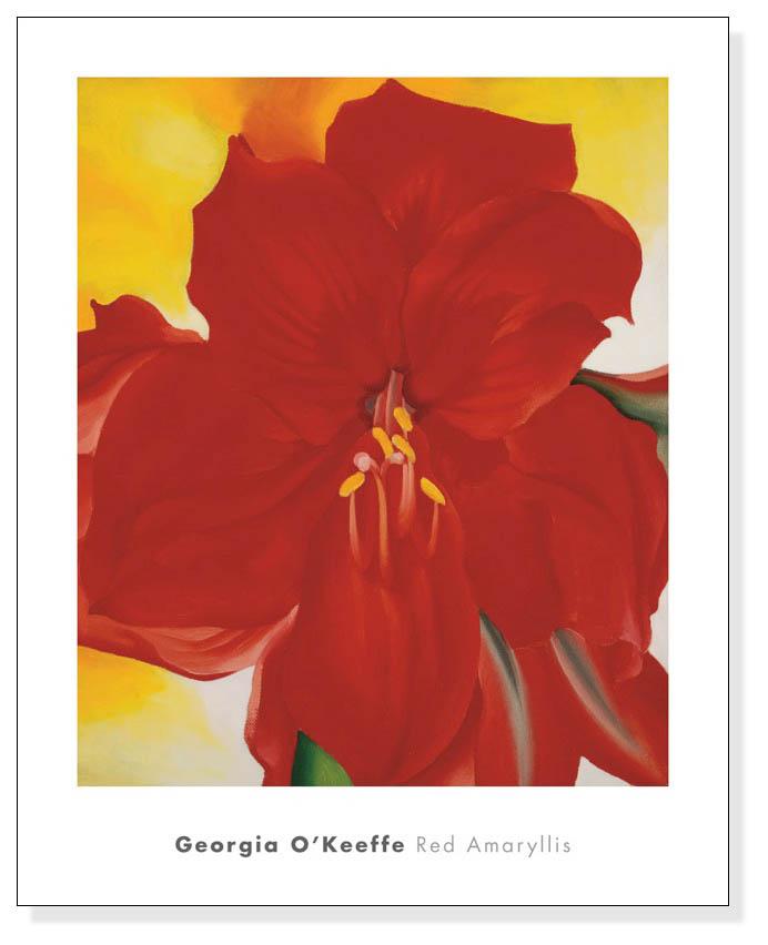 Red Amaryllis、 1937(ジョージア オキーフ)
