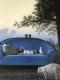 The Blue Sofa(ミヒャエル ゾーヴァ)
