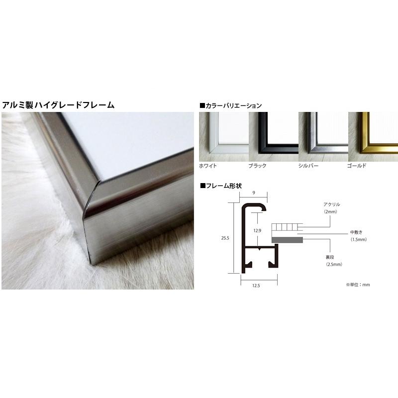 限定マット額装品/カウズ【HECTIC Flyer】