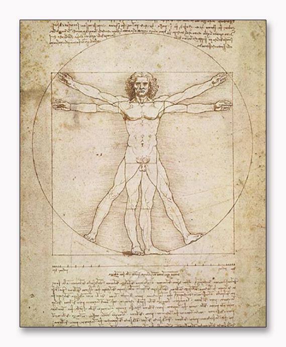 ウィトルウィウス的人体図(レオナルド ダ ヴィンチ)