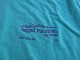 新品 2021SS ラッギッドマウンテン NH 4000 Footer Tシャツ ミント L tsg391