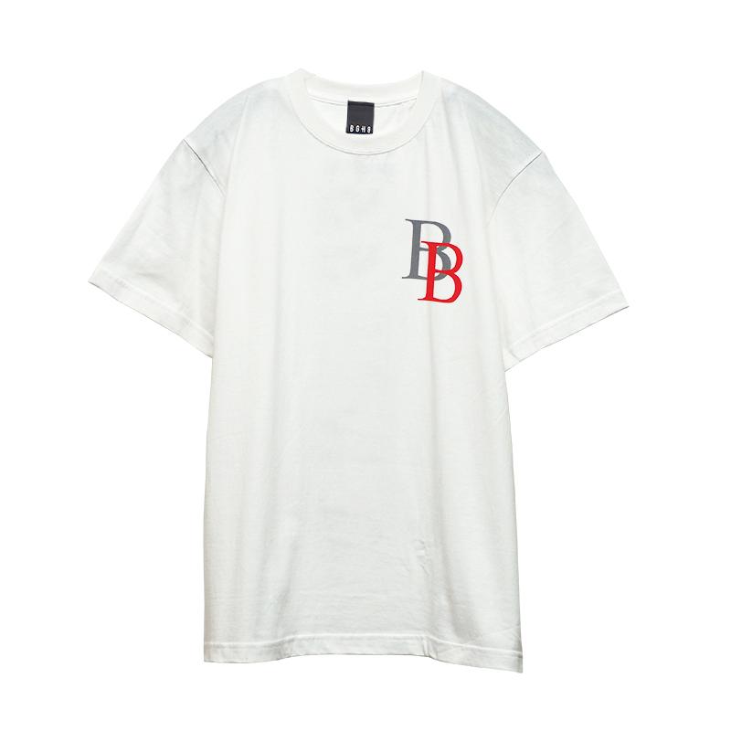 B FLAG-TS