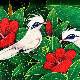 バリ絵画 プンゴセカン ハイビスカスとバリスターリング/【ジャラックバリ】 額付き