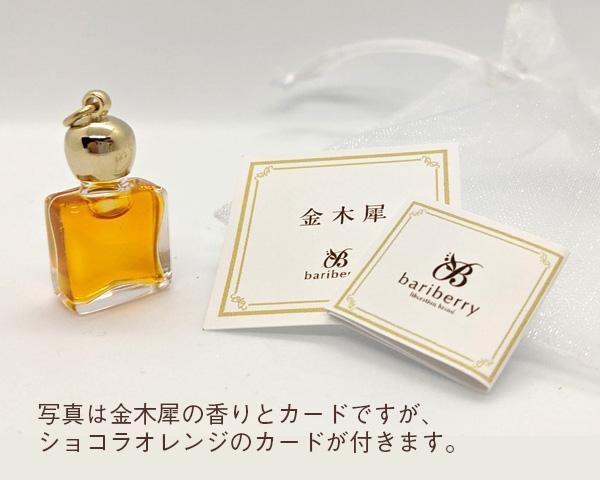 ショコラオレンジ メッセージボトル(ボトル収納袋&紙袋つき)