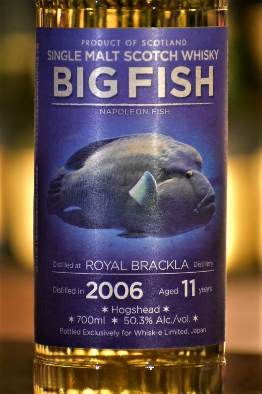 ビッグフィッシュ ロイヤルブラックラ 11年 2006