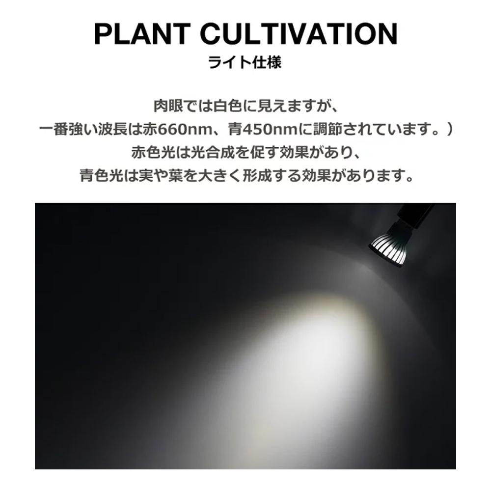植物育成LED SUN-10W 白色電球 口径E17 口径E26(PlantLight10W)観葉植物 植物栽培ライト (電球のみ)