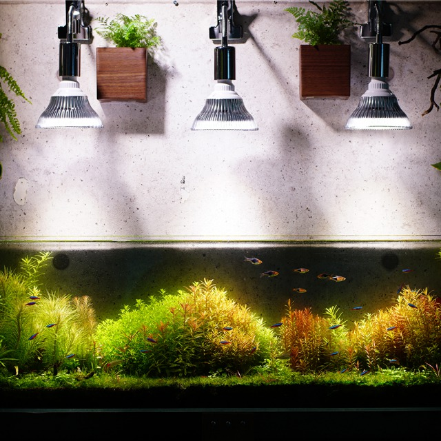 E26 PLANT CLIP-A 電球なし LED 学習机 勉強机 ライト 照明 LEDライト 電気スタンド 学習用 デスクスタンド テーブルスタンド led デスクライト クリップ デスクライト おしゃれ テーブルライト クランプ デスク 卓上 小型 読書灯 寝室