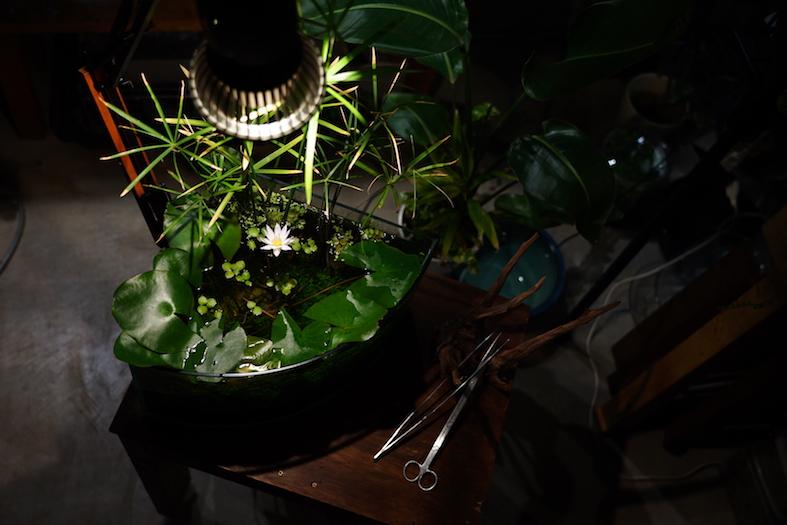 TSUKUYOMI LED 20W【発売予定】