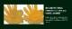 送料無料 ミズノ グローバルエリート 1AJGL22003 ゴールデンエイジシリーズ 硬式グラブ/グローブ 内野手用 サイズ8(ゴールデンエイジサイズ) 小学校高学年〜中学生用 グローブ 野球 硬式 型付け無料 学生野球対応 ボーイズ リトル キャッシュレス5%還元