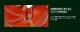 送料無料 ミズノ グローバルエリート 1AJGY22010 ゴールデンエイジシリーズ 軟式グラブ/グローブ オールラウンド用 サイズ10(ゴールデンエイジサイズ) 小学校高学年〜中学生用 グローブ 野球 軟式 型付け無料 学生野球対応 総体 キャッシュレス5%還元