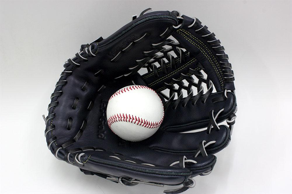 ハイゴールド ソフトボール グローブ BSG-8254 ネイビー 一般ソフトボール用グラブ サイズD-2 女子選手に最適な手入れ部小さ目グラブ ベーシックカスタマーシリーズ