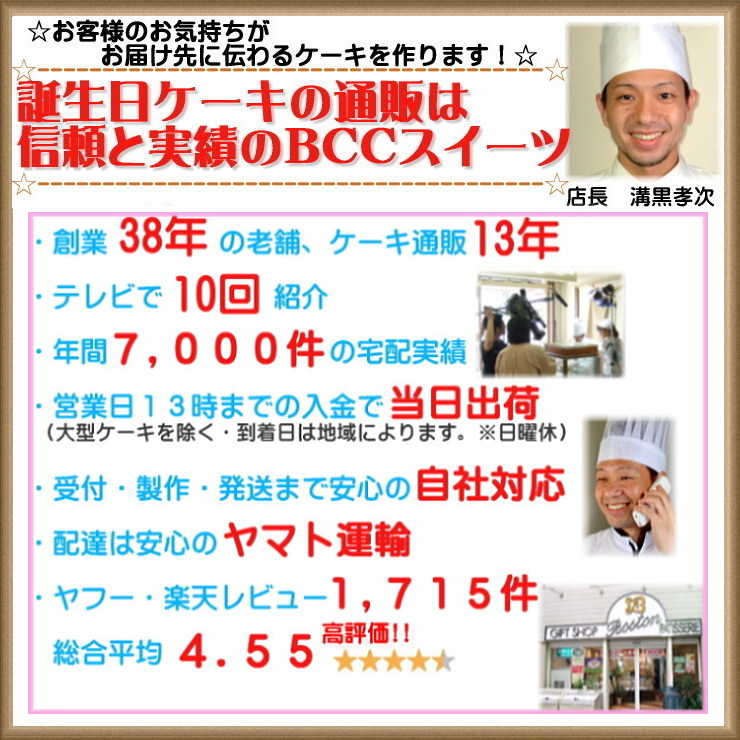 バースデーケーキ 誕生日ケーキ  名入れ 大阪ヨーグルトケーキ 5号 / 15cm