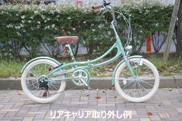 Classical/Folding Bike