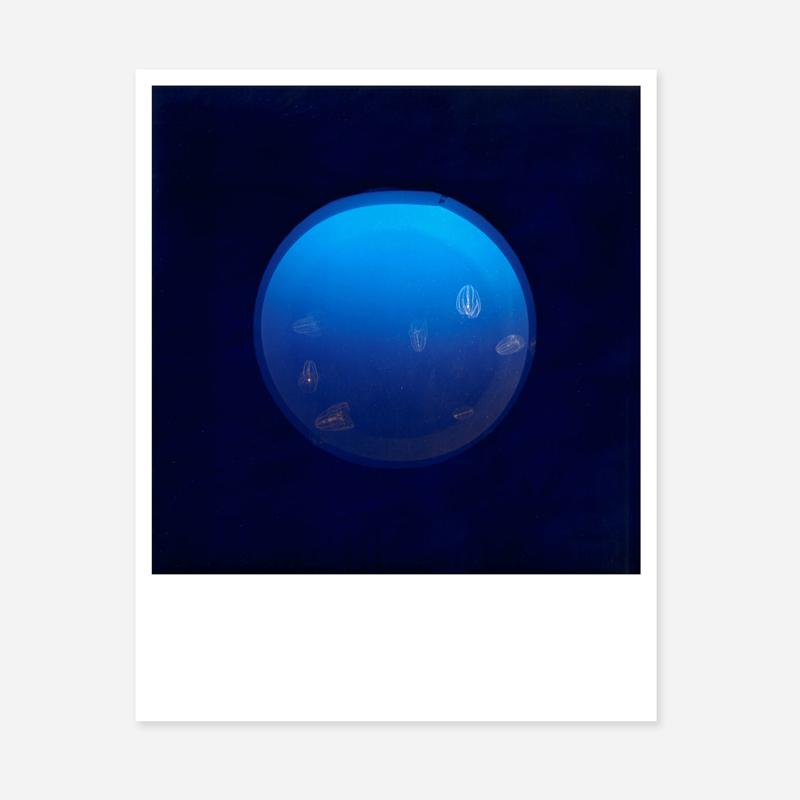 川内倫子 《Early Works 1997》ミニポートフォリオ