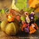 ラビット〜Chloeとかぼちゃモンブラン〜 【作家:Miniera d'oro】