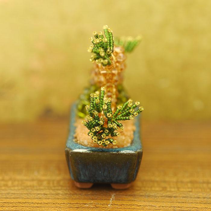 盆栽  【作家:ちばのぶよ】