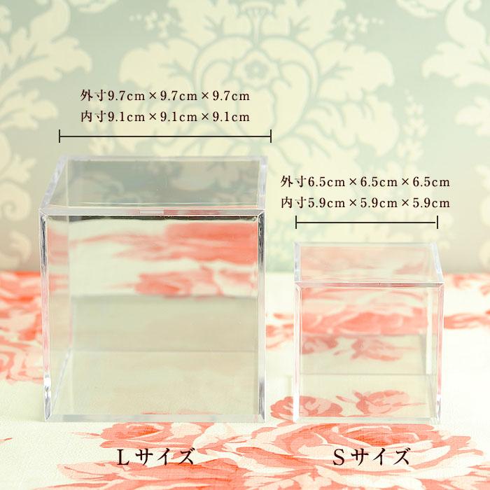 コレクションキューブ Sサイズ ミラー付き(6個セット)