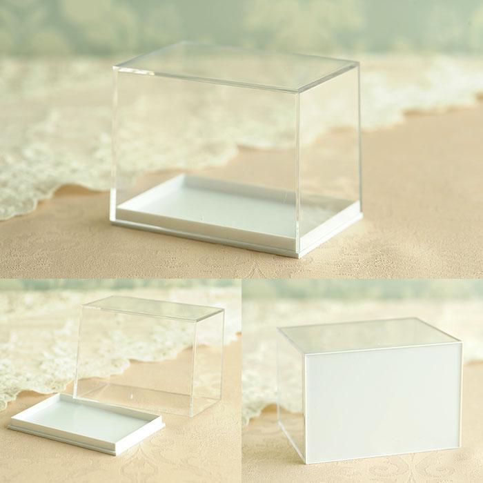 ドイツ製 ディスプレイ用プラスチックケース Mサイズ