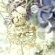 ☆3/19 再入荷☆ こよみちゃんシリーズ♪〜水無月ちゃん〜 【作家:Lovelyカオリ〜渡辺かおり〜】