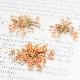 ドライフラワー(押し花) レースフラワー オレンジ