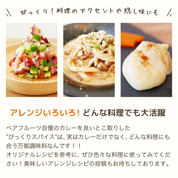お試しセット(スーパー焼きカレーソース+びっくりスパイス20g)