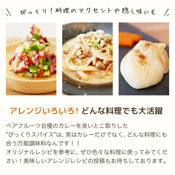 びっくりスパイス(45g)