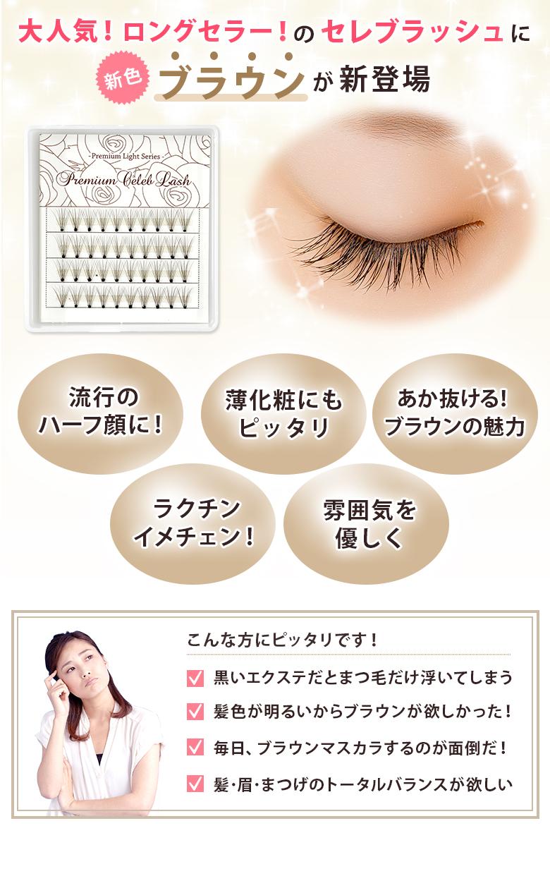【Asunaro】あすなろ プレミアムセレブラッシュ 0.07mm 10本束 チョコブラウン
