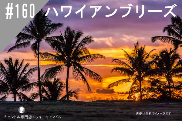 ◆【香料】#160 ハワイアンブリーズ/ Hawaiian breeze