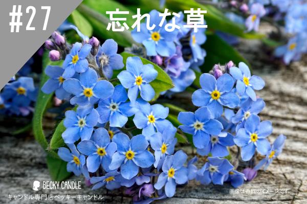 ◆【香料】#27 忘れな草/Forget me not