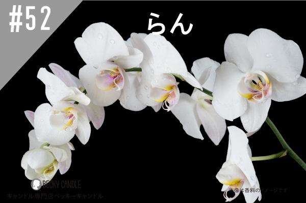◆【香料】#52 らん/Orchid