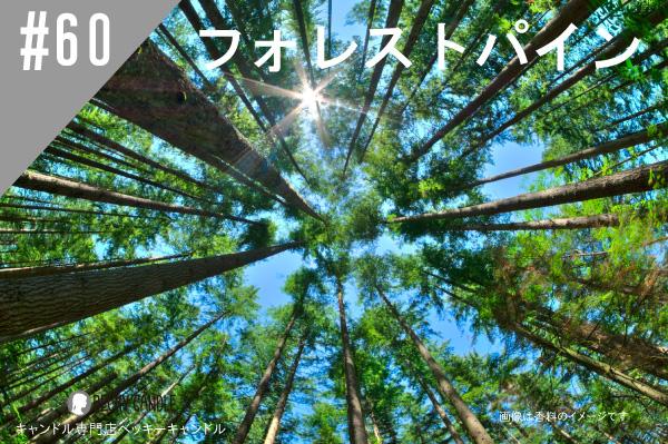 ◆【香料】#60 森林浴/Forest pine