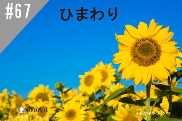 ◆【香料】#67 ひまわり/Sun flower
