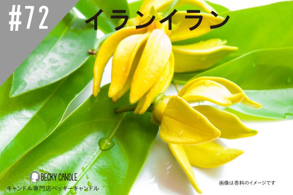 ◆【香料】#72 イランイラン/Ylang-ylang