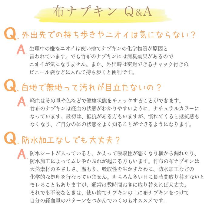 【送料無料】【2枚組】TAKEFU竹布・布ナプキンL 2枚組(メール便使用)