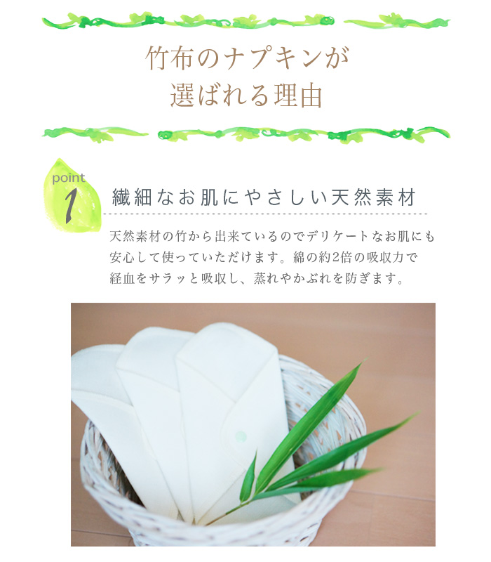 【送料無料】TAKEFU竹布・布ナプキン・スターターミニキット (メール便使用)