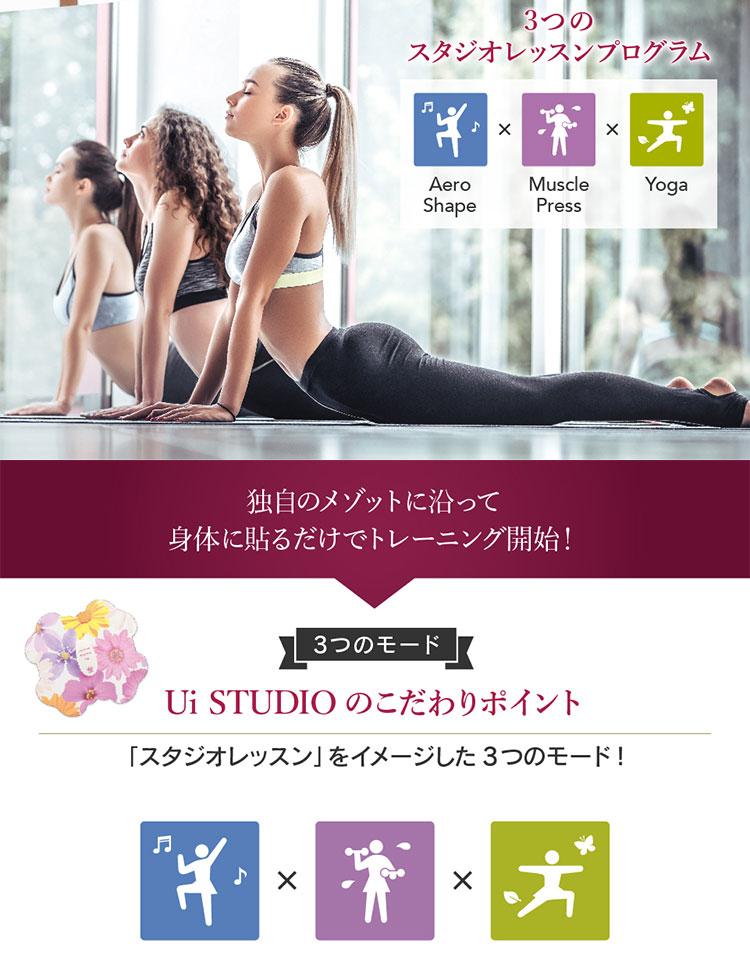 【Ui STUDIO】Quaro4極タイプEMS[Y490]