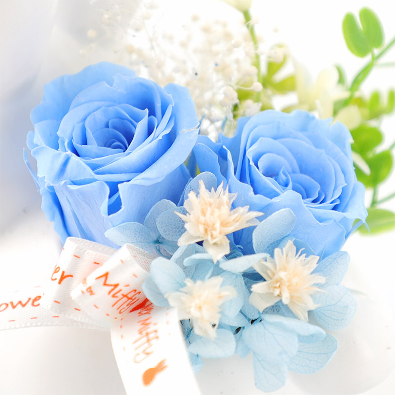 ◆こうさぎカバー プリザーブドフラワーセット ブルー