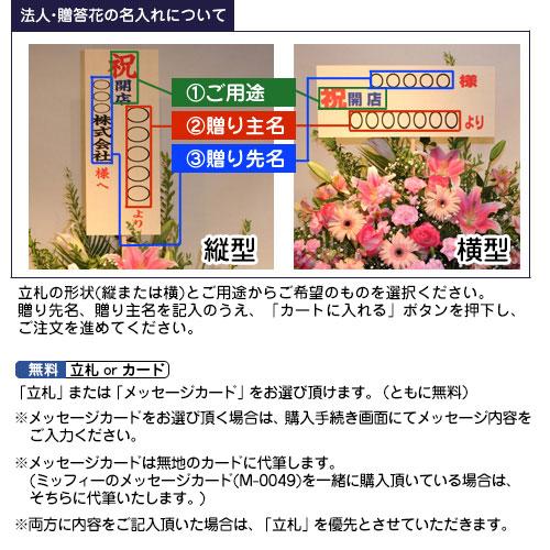 【直送商品B】アレンジ 赤紫系