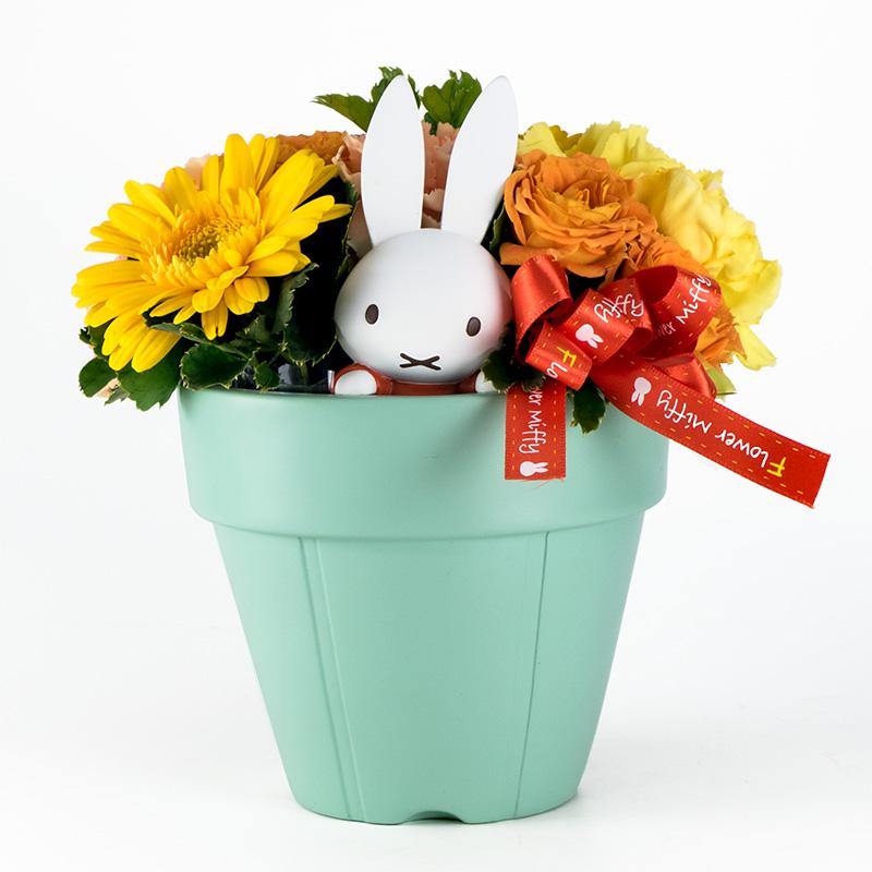 【直送商品B】ひょっこりプランターアレンジ イエロー