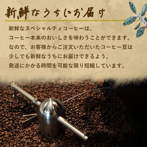 【中深煎り】ホンジュラス デカフェ(カフェインレス)200g