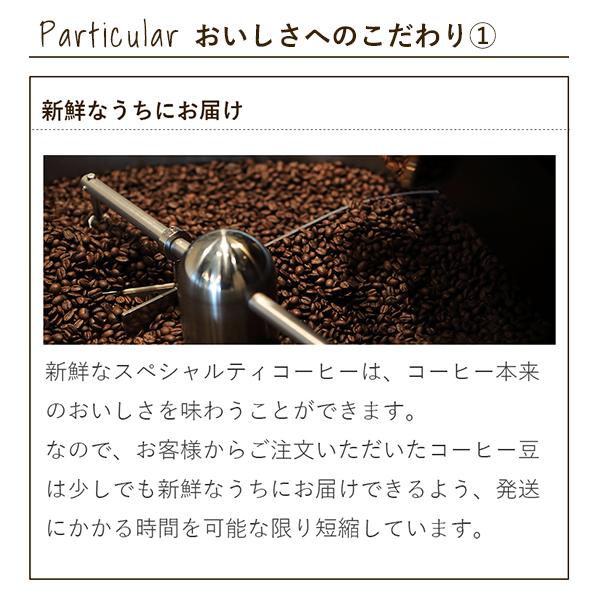 【送料無料】コーヒー豆2個セット